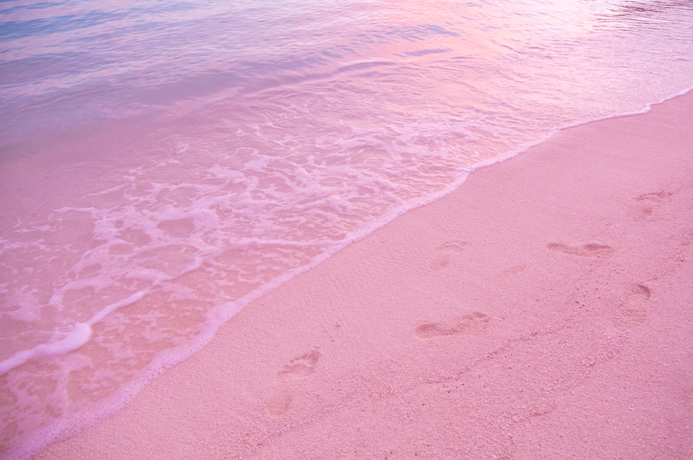 Pink sand beach on Harbour Island, Bahamas